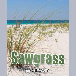 Pensacola Sawgrass