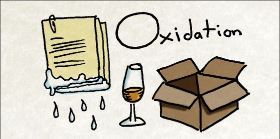 Beer Oxidation