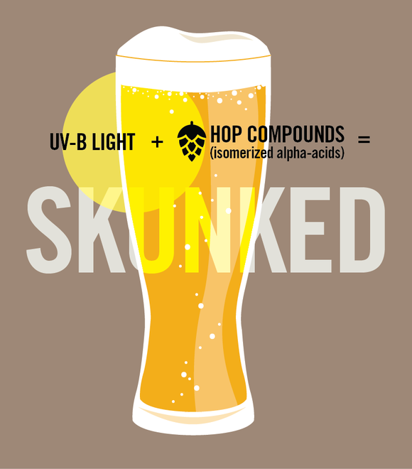 How a beer gets skunked