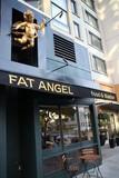 Thumb_fat-angel